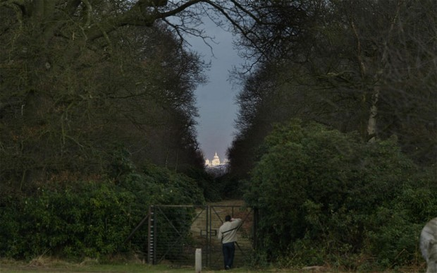 It was a new-build once: the protected view of St Paul's cathedral from King Henry's Mound in Richmond Park (The Telegraph; Photo: Rex Features)