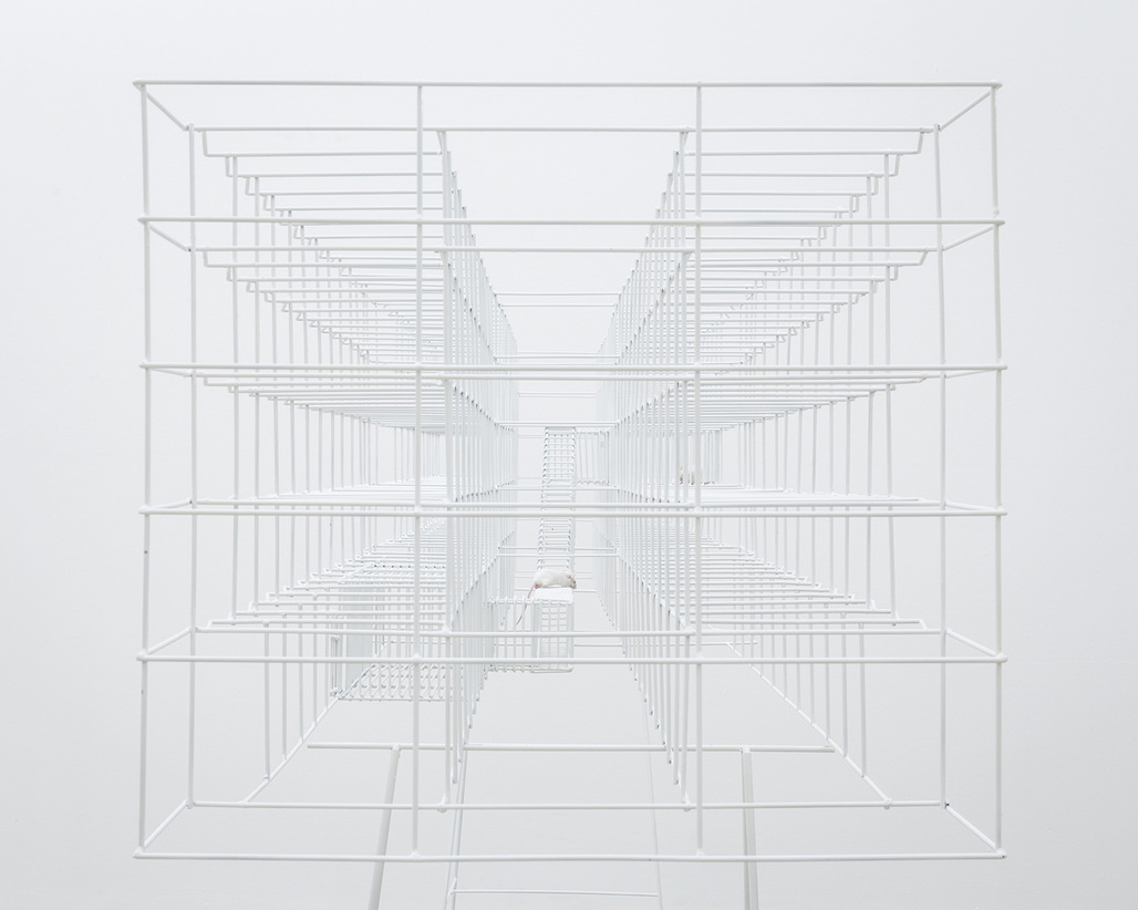 "Swiss Art Awards 2013 First-prize winner in Architecture: ""PAROLE - Champ-dollon 1/24"" by BUREAU A. Photo: Dylan Perrenoud"