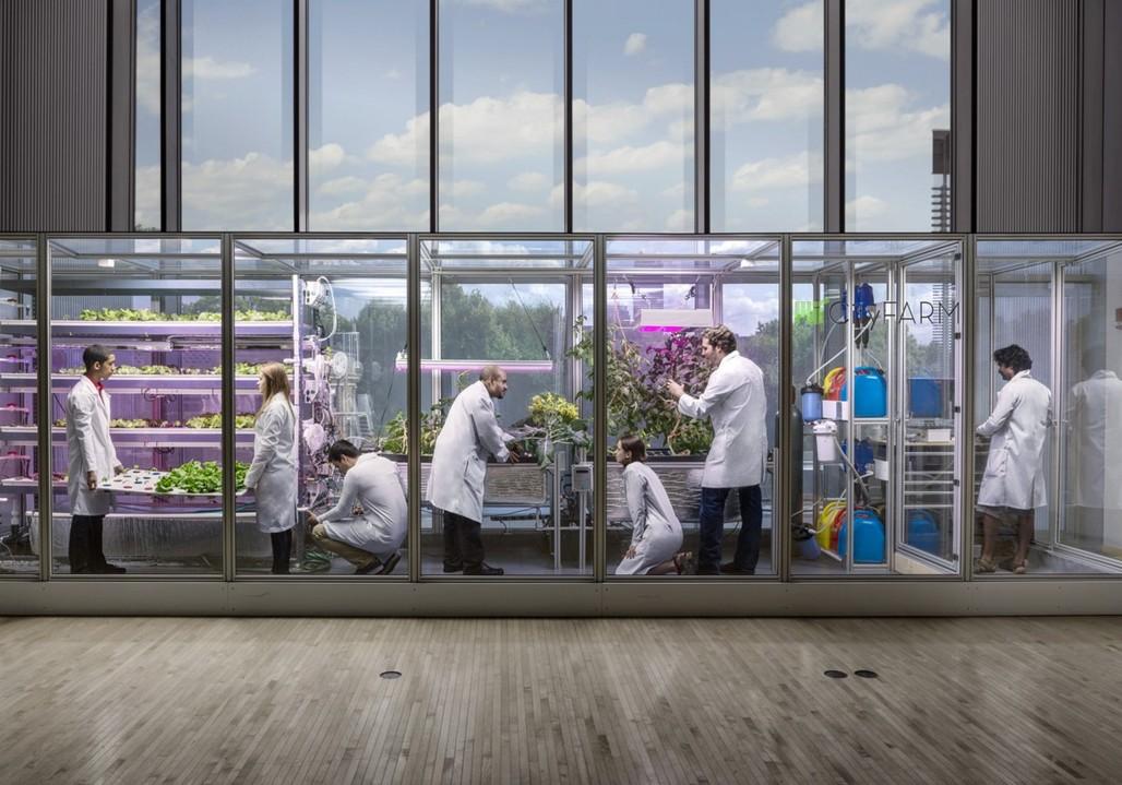 The Food Server at the MIT Media Lab. Image credit: Caleb Harper.