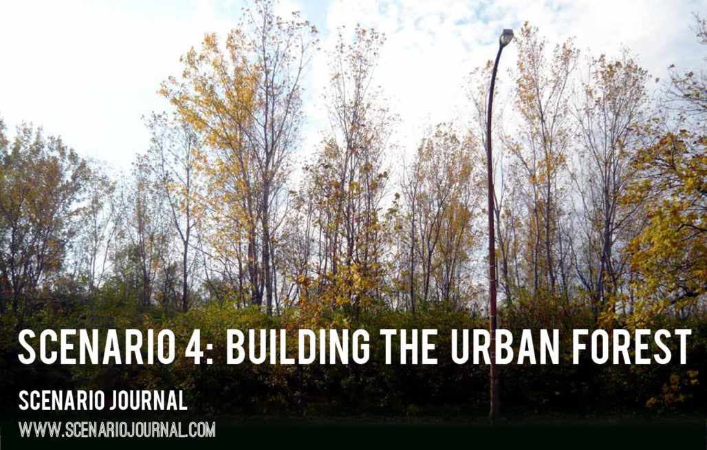 """Rich spontaneous vegetation covers the site of the former Pruitt-Igoe towers. From """"To Multiply or Subdivide: Futures of a Modern Urban Woodland"""" by Jill Desimini; photo by Jill Desimini."""