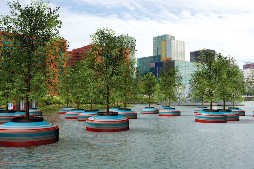 Rendering of the floating forest that will be 'planted' in Rotterdam's Rijnhaven downtown harbor basin next year. (Image via popupcity.net)