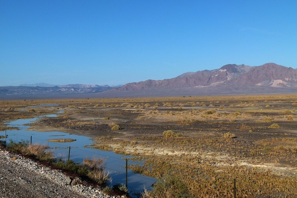 El Niño has brought heavy rain to Southern California –but is it enough to alleviate the state's historic drought? Meteorologists say it's too early to tell. Photo: Death Valley after a rain via Wikipedia