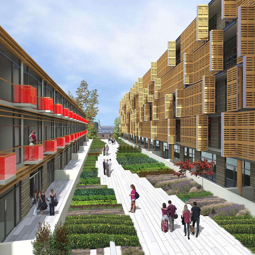 Rendering of Samuel Pitnick's design for The Habitat @ Red Hook (Image: Samuel Pitnick)