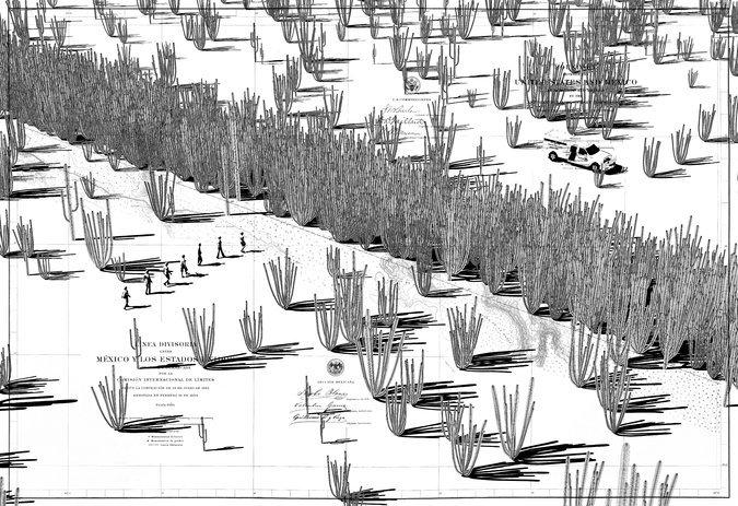 A wall of cactus. Image: University of California Press