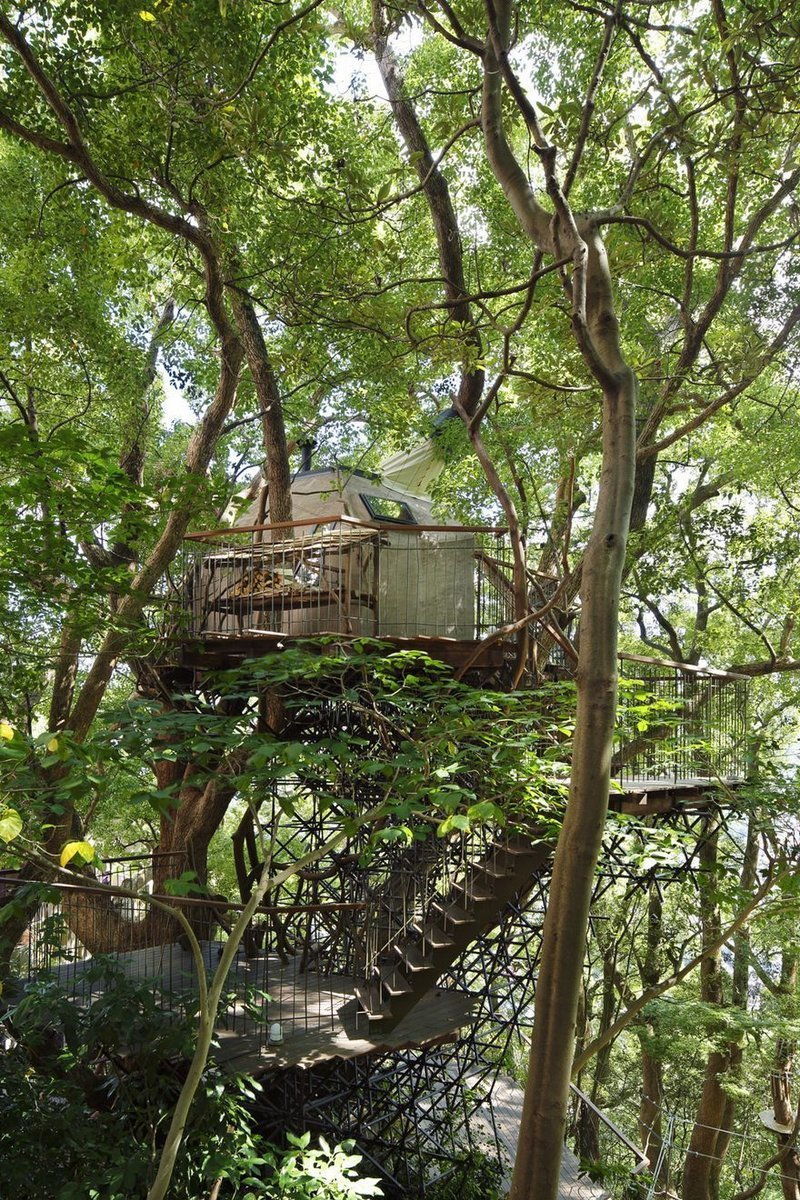 Built around a 300-year old camphor tree, the 3D-designed steel trellis structure supporting the treehouse doesn't even touch the tree. (Photo: Koji Fujii / Nacasa and Partners Inc.; Image via spoon-tamago.com)