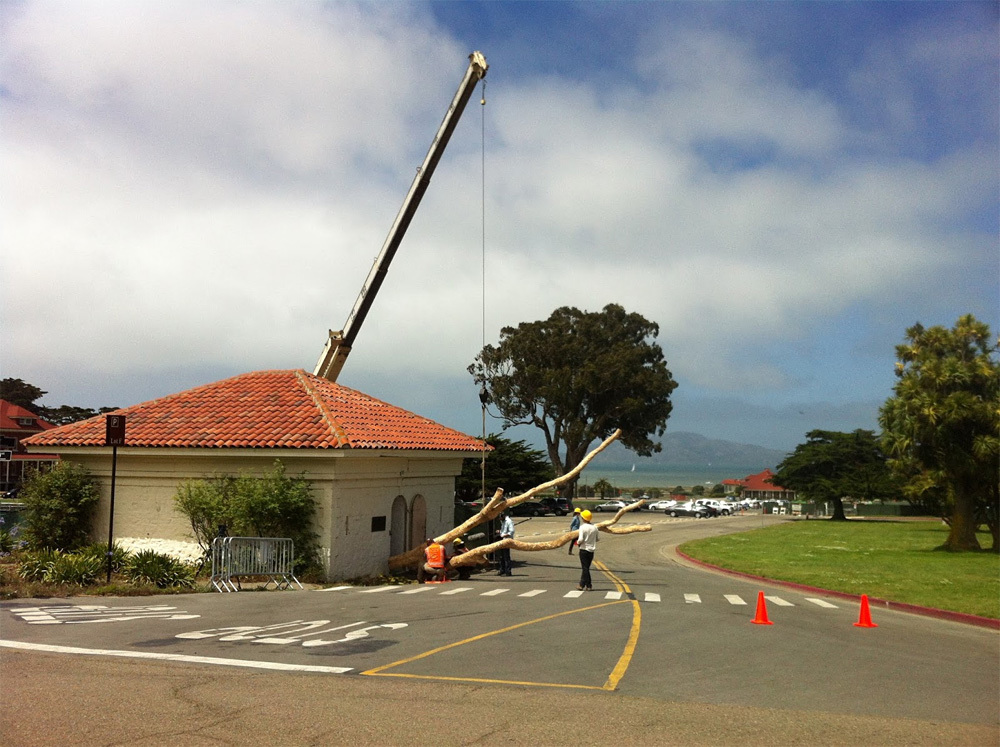 Andy Goldsworthy's tree sliding into the Presidio's Powder Magazine building. Photo: http://presidio-brat.blogspot.com
