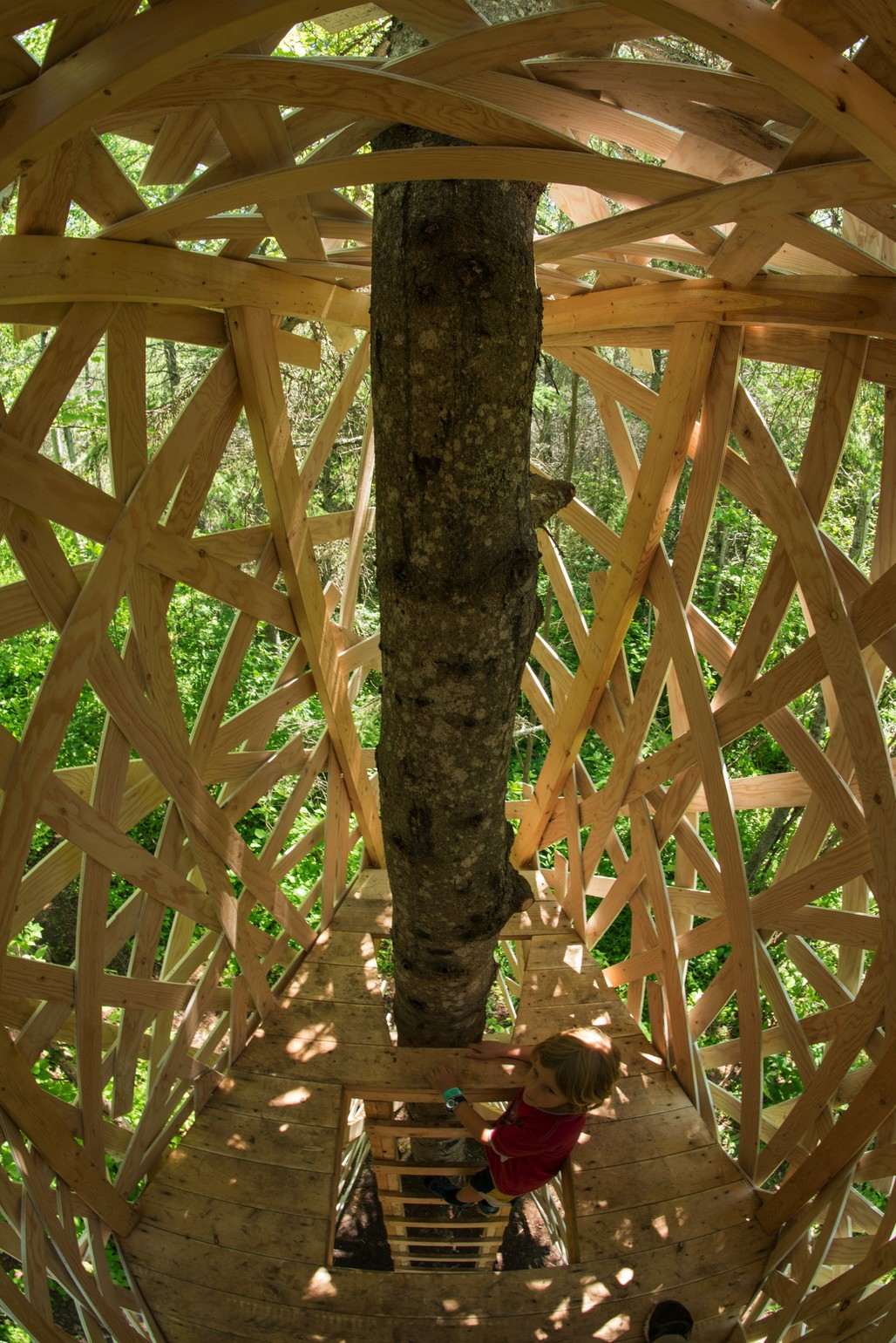 La Chrysalide by landscape architects Gabriel Lacombe & Virginie Roy-Mazoyer, Vancouver (British Columbia) & Montreal (Quebec) Canada. Photo credit: Martin Bond