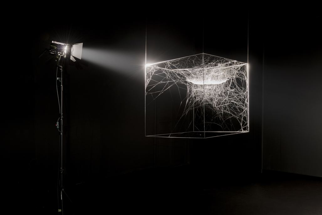 For his installation for the Chicago Architecture Biennial, Tomás Saraceno presented an collaborative project with several species of spiders. Via Chicago Architecture Biennial