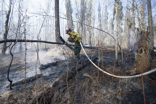 A member of Wildfire Management Alberta's Wild Mountain Unit out of Hinton, hoses down hotspots in the Parsons Creek area of Fort McMurray Friday, May 5, 2016. Photo by Chris Schwarz/Government of Alberta.