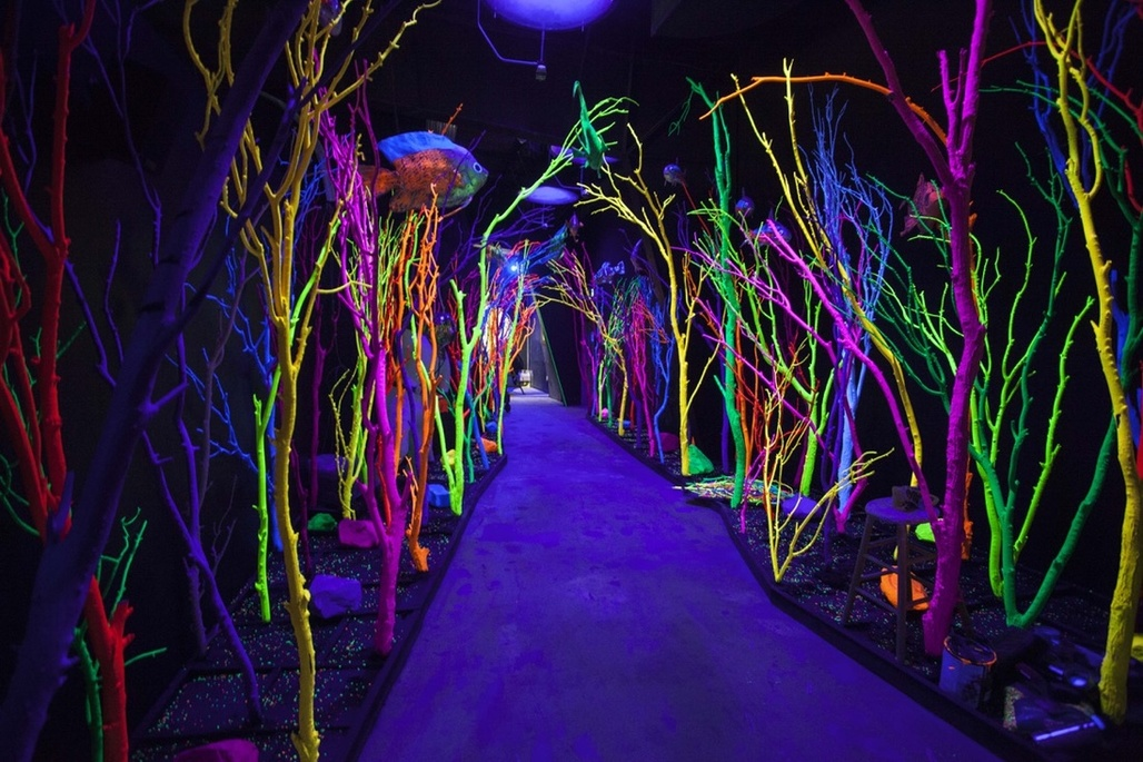 Photo by Kate Russell. Courtesy of Meow Wolf.