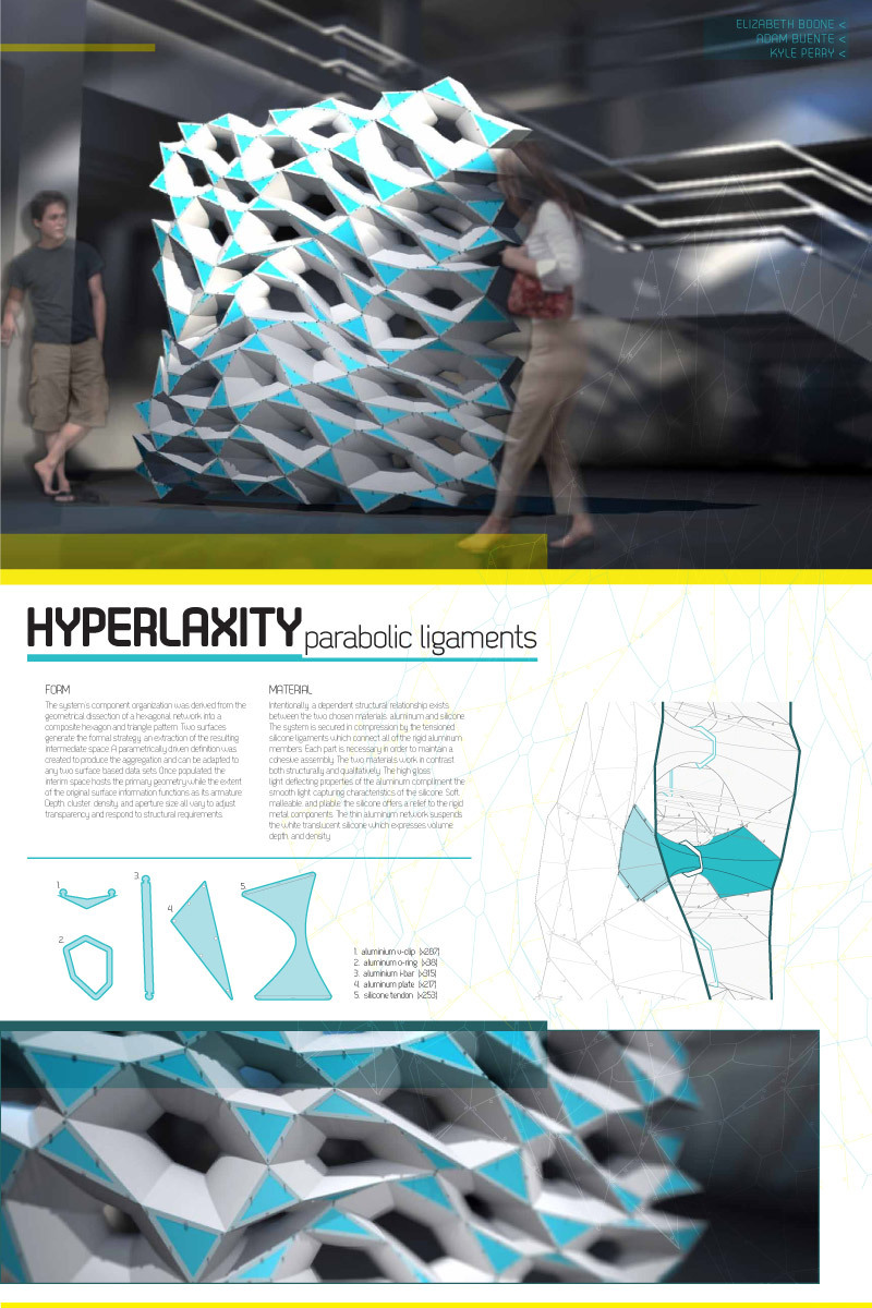"PARTITION Winner: ""HYPERLAXITY: parabolic ligaments"" by Elizabeth Boone with PROJECTiONE (Adam Buente and Kyle Perry)"