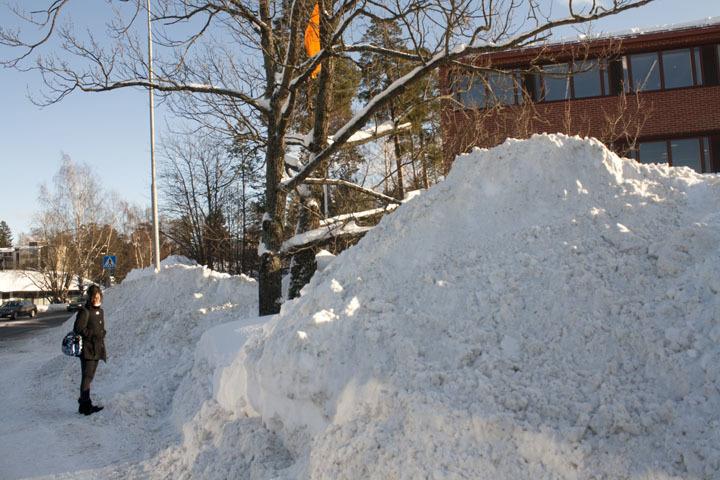 Snow in Espoo, Finland.