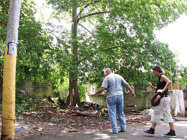 Informal urban horticulture and shared knowledge networks