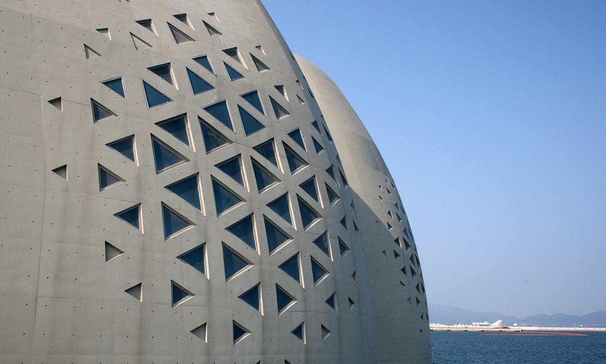 Cones (Photo: soma)
