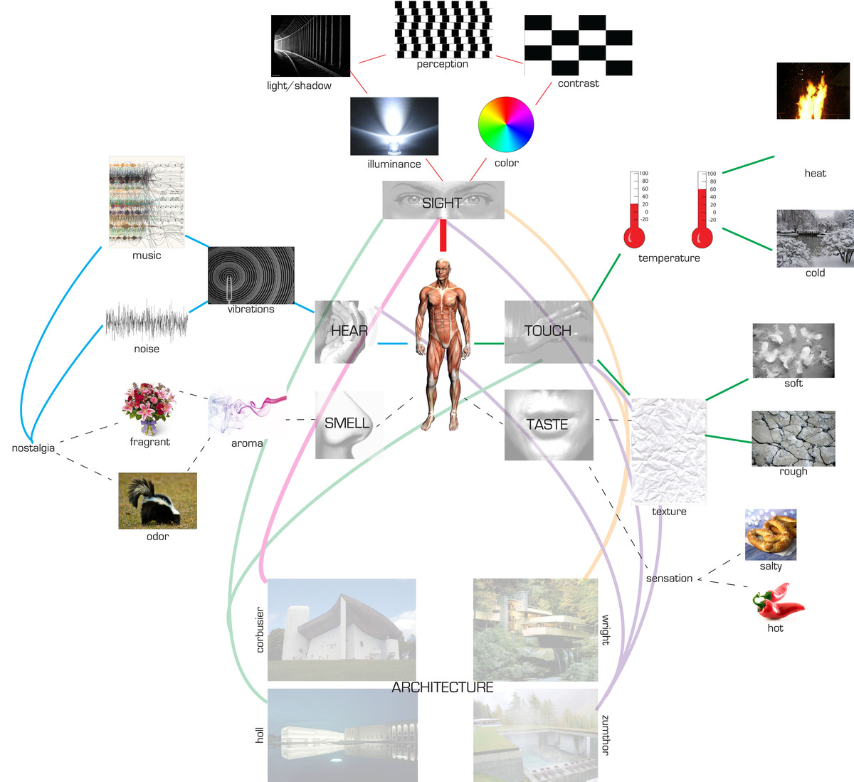 collage begins analyzing how the body uses its senses