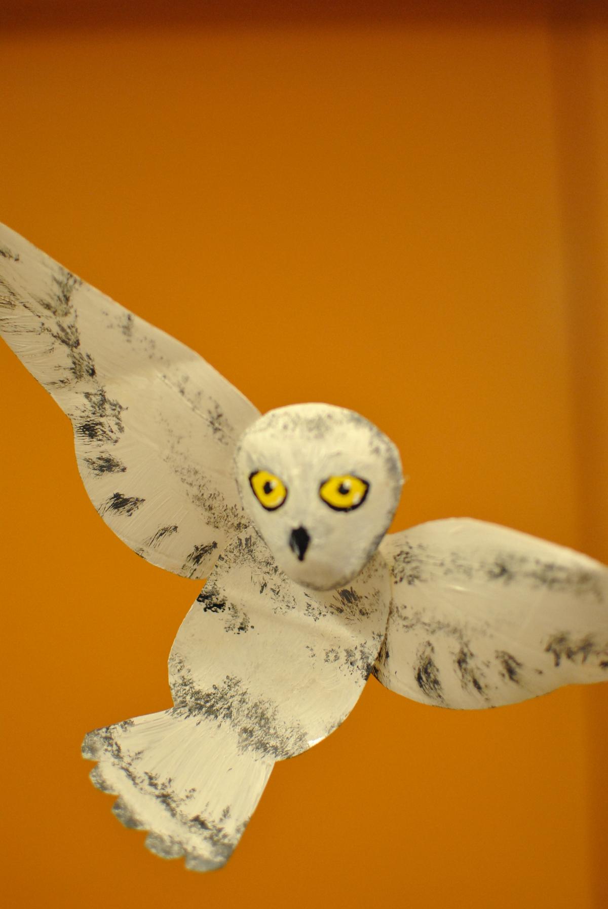 Soda Bottle Snowy Owl (J.E.)