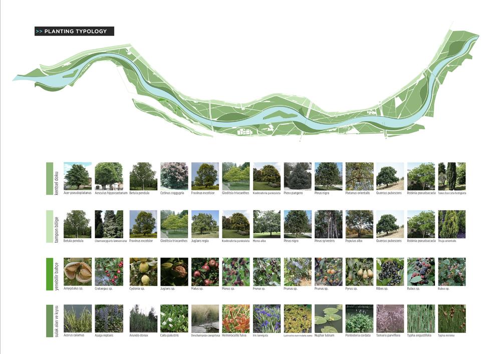 021 – SCHEMES | PLANTING TYPOLOGIES - Image Courtesy of ONZ Architects & MDesign