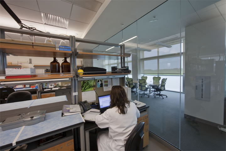 Example of a lab allowing full views which reflects a trend of openness and allows natural light to enter enhancing worker productivity.