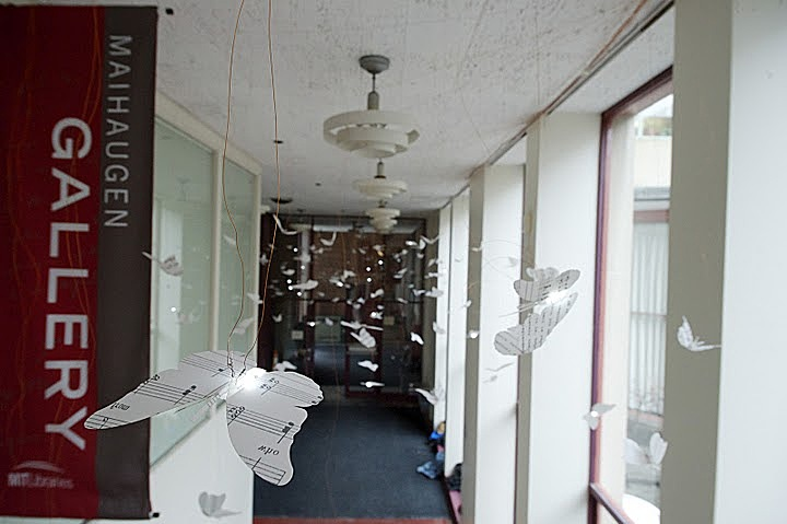 Bibliodoptera, by Elana Jessop and Peter Torpey. On display in the corridor along the Hayden Library Courtyard.