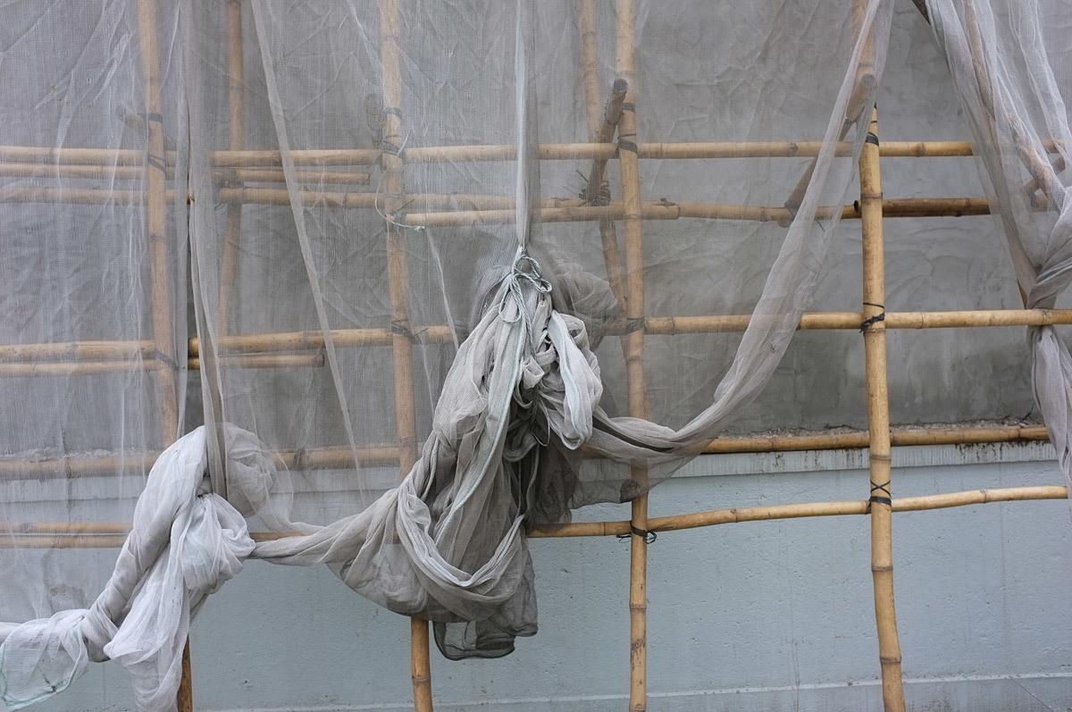 Bamboo scaffolding in Kwun Tong.