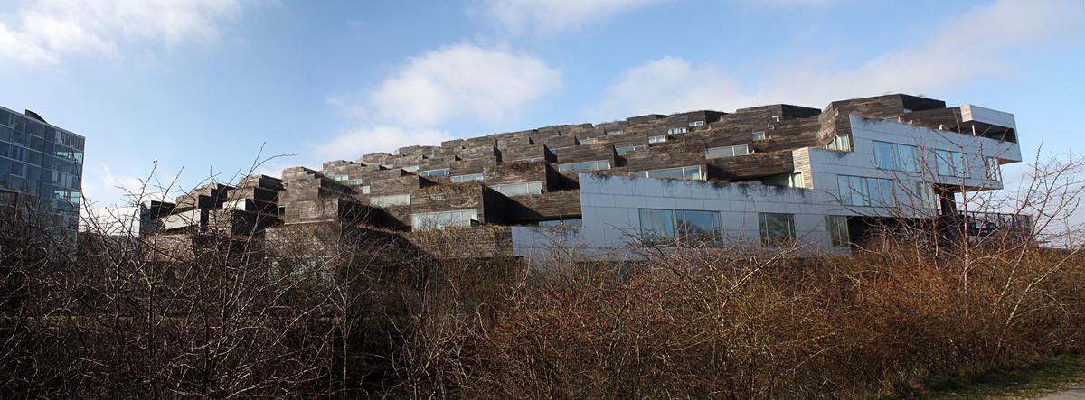 Bjarke Ingalls (BIG) Mountain Homes