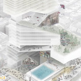 Honorable Mention: Dennis Kam Fung Lui, The University of Hong Kong (China)