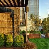 Midtown Minimal Rooftop Garden in New York City by workshop/apd (Photo: T. G. Olcott)