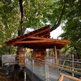 Tree Adventure in Philadelphia, PA by Metcalfe Architecture & Design