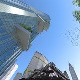 Tower looking up (Image: WXY Architecture + Urban Design)
