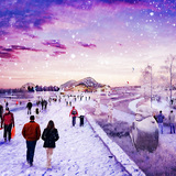 President's Botanic Garden in the winter. Image © Gillespies LLP.