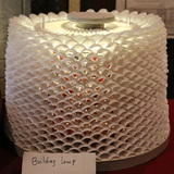 Future Voices Finalist: Building Lamp (made from plastic spoons) by Rubin Gurung