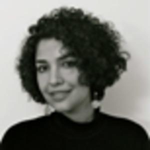 Naghmeh Hosseinzadeh