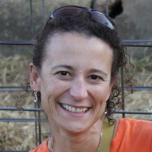 Linda Lavis