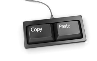 Portfolio Plagiarism