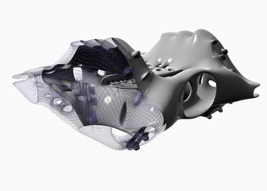 3D Wire Mesh Rendering