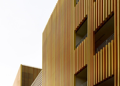 A refreshing take on the light industrial factory - Sunray Woodcraft Construction Headquarters