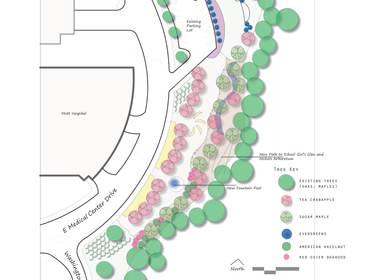 A Healing Garden project for Children's Hospital