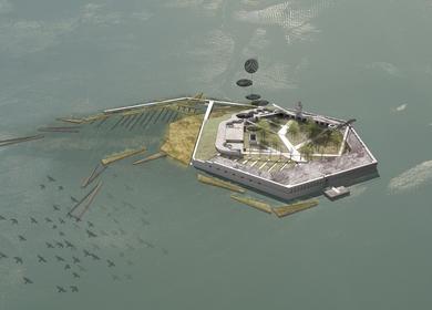 Regenerate Fort Carroll: A Gateway Ecological Park