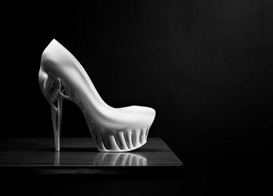 Biomimicry Shoe