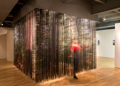 Lenticular Curtain   BREATHTAKING: Constructed Landscapes