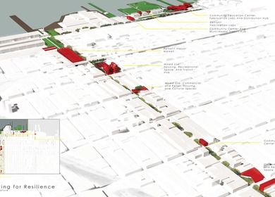 Cultivating for Resilience--Evolving Sunset Park