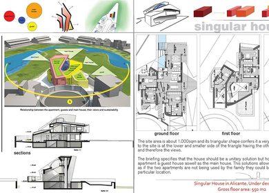 Singular House