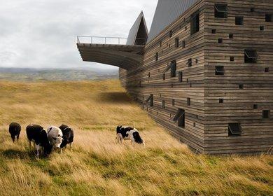 Ark House