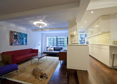 NYC Apartment Combination