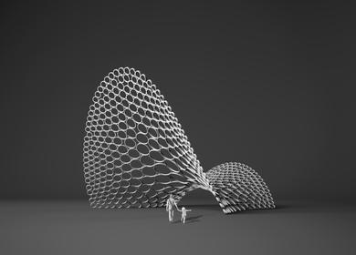 Diatom Domes: Cellular Descretization on a Shell
