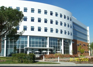 College of Business & Economics