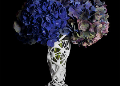 Phyllotaxia 3d Printed Vases