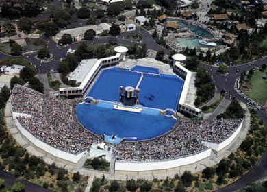 SHAMU Stadium, Bahia De Los Angeles, Pacific Theatres (Entertainment)