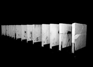 Thesis project_Master of Architecture II