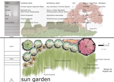 Planting Design Studio Exercises